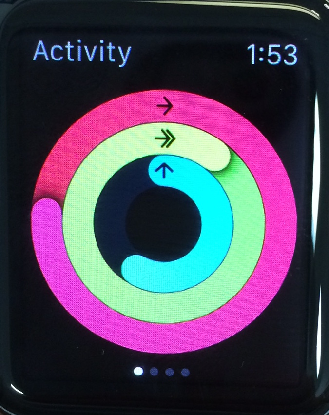 Apple Watch's activity rings. Pink is for calories burned from moving around, green is for workout time (moving with an accelerated heart rate for extended time) and blue is for standing and moving around for at least a minute during a given hour.